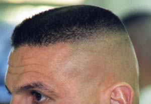 High and tight is a term used to denote any of several very short hair