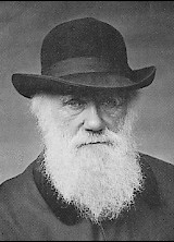 The classic image of Darwin as an old man