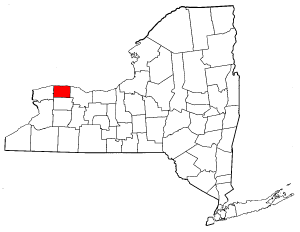 Image:Map of New York highlighting Orleans County.png