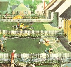 Illustration of the backyards of a surburban neighbourhood