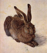 , A Young Hare, 1502, Watercolor