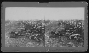 Dead soldiers lie where they fell at , the bloodiest day in American history.  issued the  after this battle.