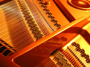 The strings of a piano