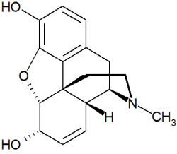 Molecular structure of morphine