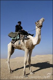 Man and Camel, Desert, Egypt. Image provided by Classroom Clip Art (http://classroomclipart.com)