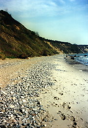 Pebble beach made up of flint nodules eroded out of the nearby  cliffs, ,